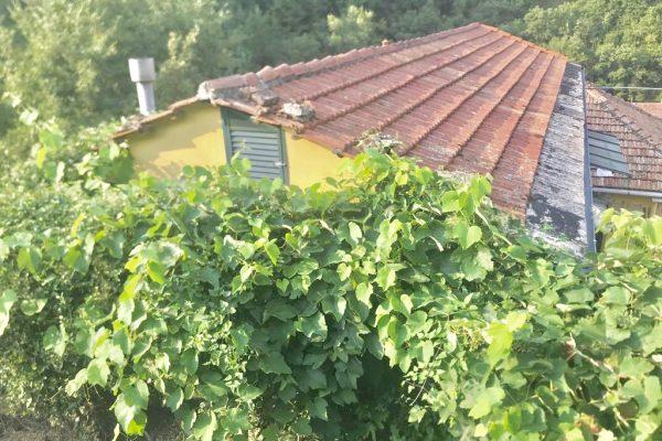 Casa indipendente con terreno Cavassolo